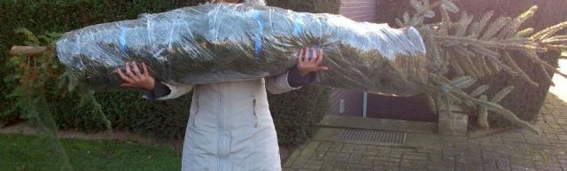 Tannen-Wrap